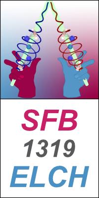 Logo SFB ELCH vertikal
