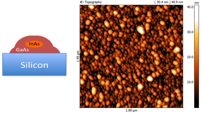 5 x 5 µm2 AFM image of high density InAs/GaAs core-shell QDs directly grown on 5°-off (001) Si substrate.