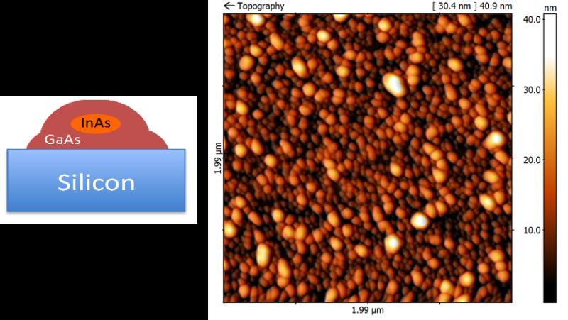Abb. 4: 5x5 µm² großes AFM Bild von InAs/GaAs core-shell QP mit großer Dichte, die direkt auf einem 5°-off (001) Si Substrat gewachsen wurden.