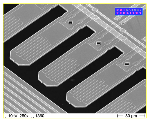 SEM picture of a part of a cantilever array with integrated actuator and Piezo sensors