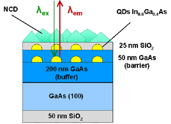 Fig. 9: Integration of quantum dots with NCD layer.