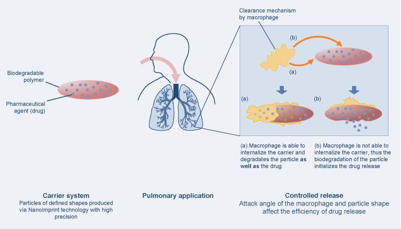 NanoImprint Pharmakon, NIP
